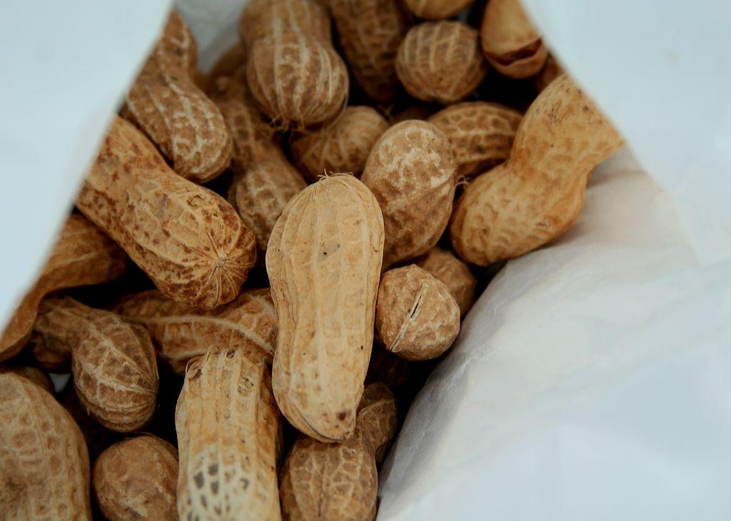 Le arachidi propiet e benefici miglioriamo il nostro for Pianta noccioline