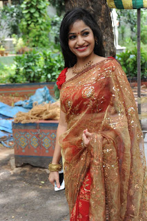 madhavi latha  Pictures in saree 2.jpg