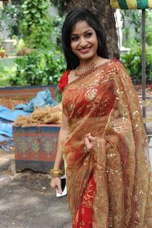madhavi latha  Pictures in saree 2.jpg