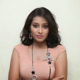 Bhanu Sri Hot Photos at Veedi Pourusham Movie Press Meet 26