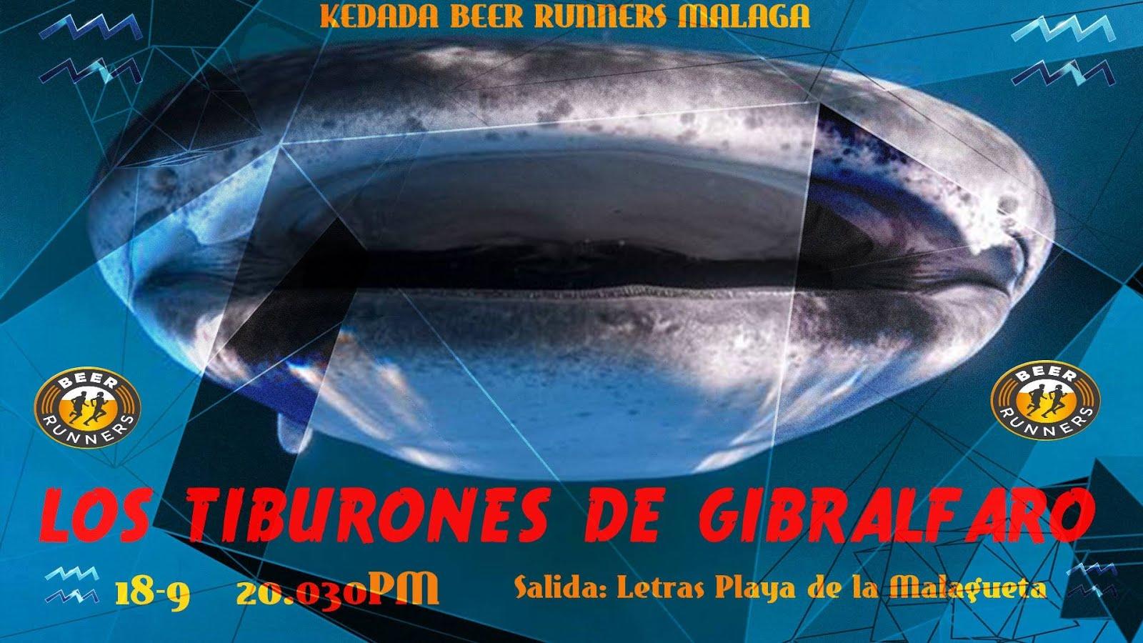 LOS TIBURONES DE GIBRALFARO