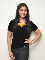 Kruthika at Vinavayya Ramayya press meet-cover-photo
