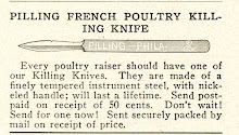 Reflections oOn The French Poultry Killing Knife