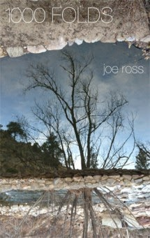 JOE ROSS's newest book--his 12th