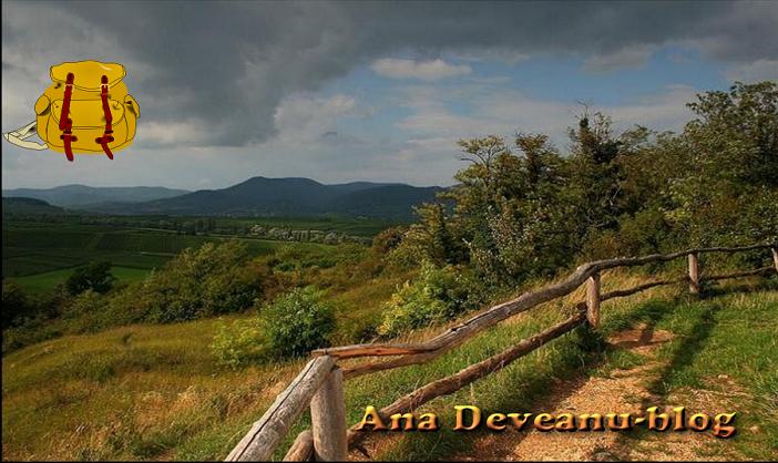 Ana Deveanu