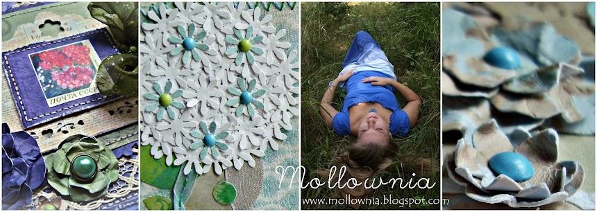 Mollownia