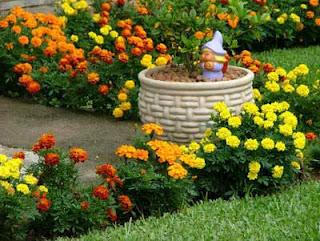 dicas de decoração para jardin