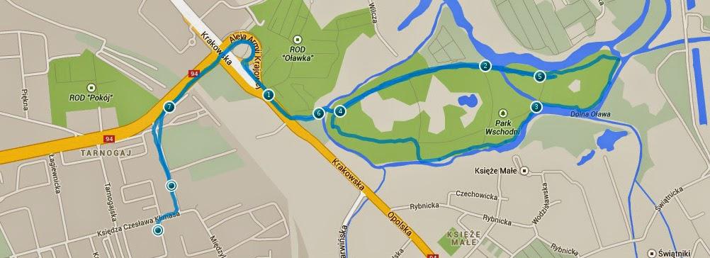 trening biegowy, bieganie we Wrocławiu