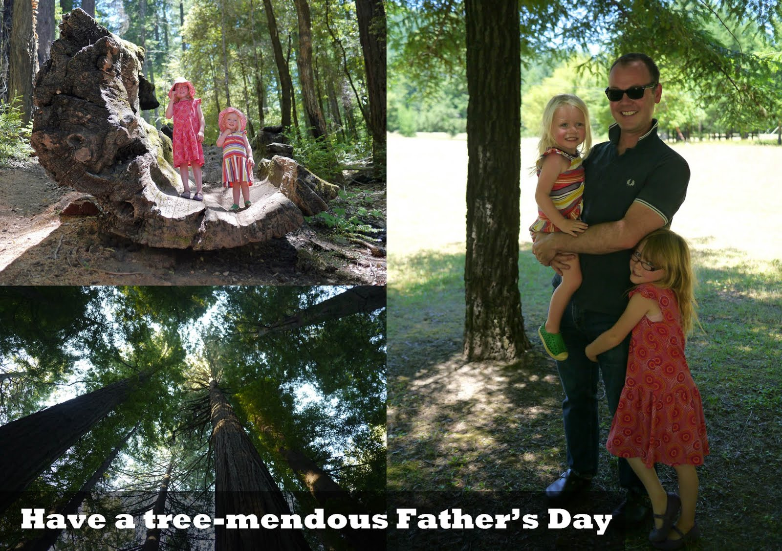Father's Day: Have a Tree-mendous Day
