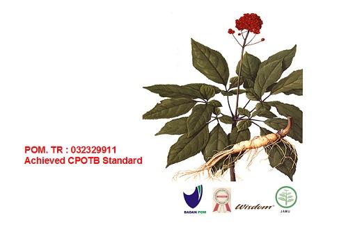 Aryantoid Informasi Kesehatan dan Pengobatan Herbal