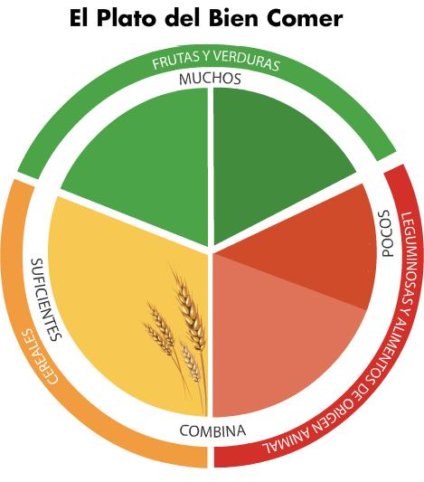 Pasitos al aprendizaje: UNIDAD DIDÁCTICA Alimentación saludable