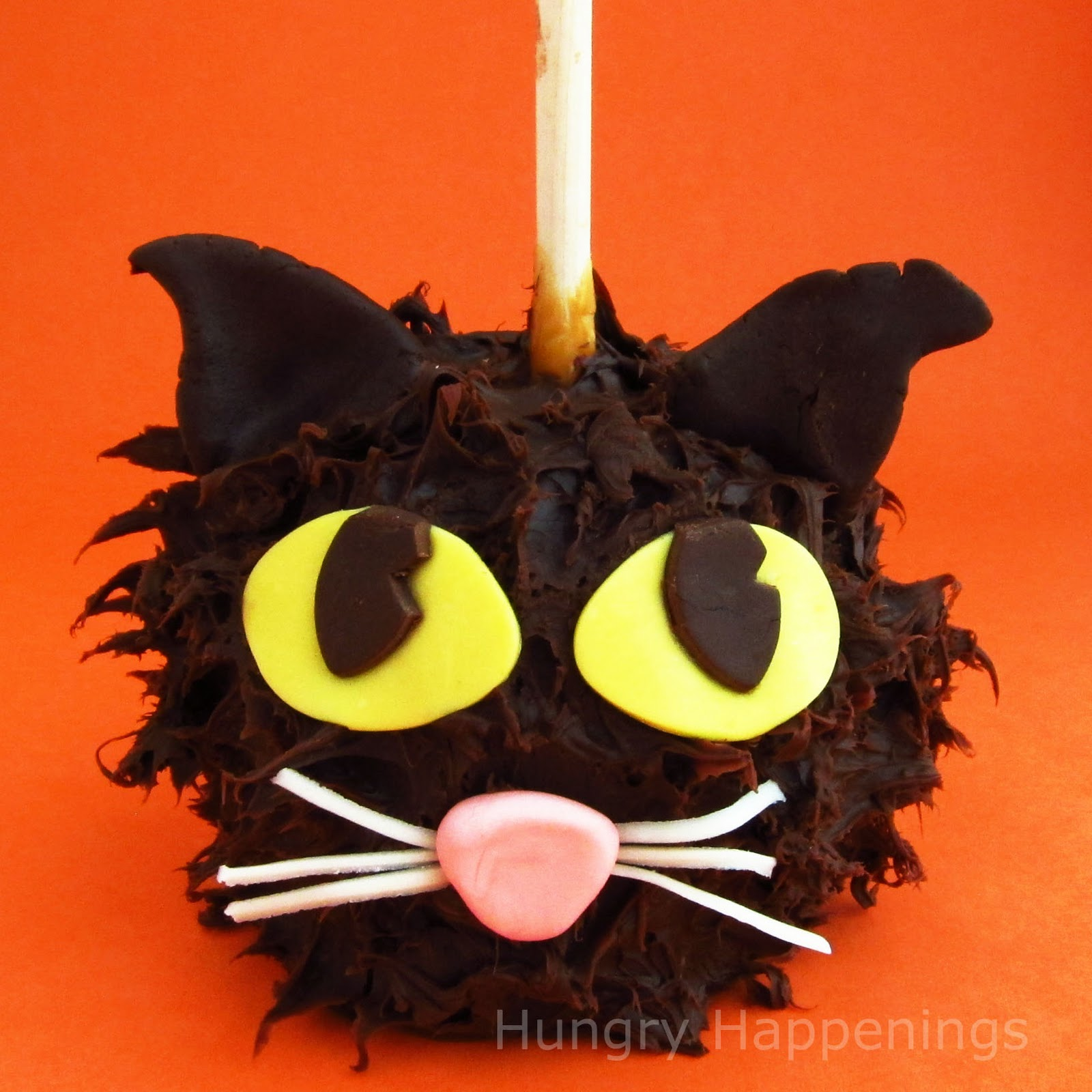 Chocolate Caramel Apple Cats - Hungry Happenings
