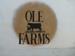 Ole Farms, Athabasca