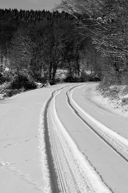 Hohenfels Volks: Snowy road through the woods