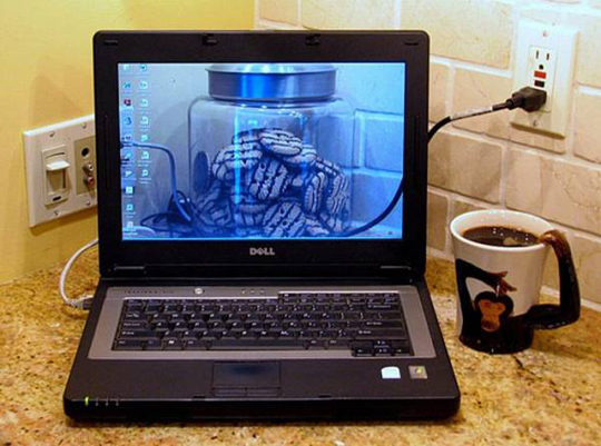خلفيات شفافه مبتكره للكمبيوتروالموبيل
