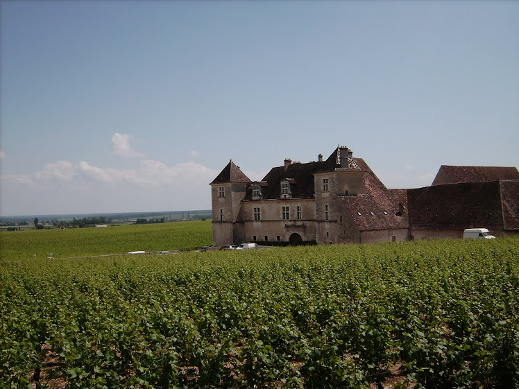 Vinhedos em Bourgogne