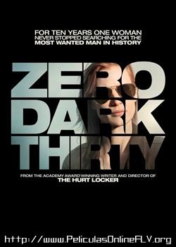 La noche más oscura (Zero Dark Thirty) (2012) peliculas hd online