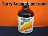 BIOSOLAMIN