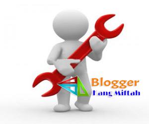 Cara Optimasi Custom Domain TLD di Hostinger-blog kang miftah