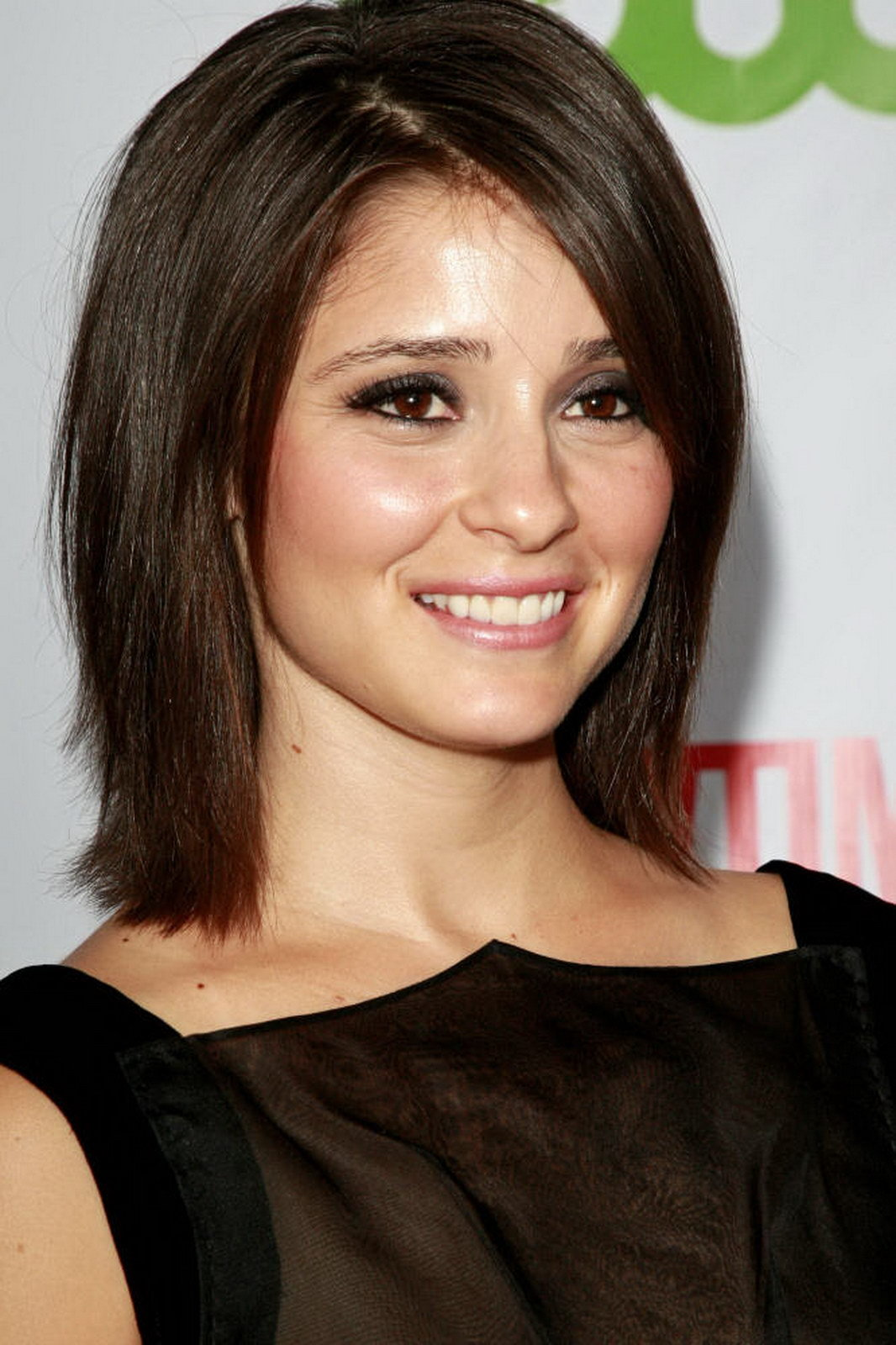 HOLLYWOOD ALL STARS: Shiri Appleby Profile,Bio and Pictures