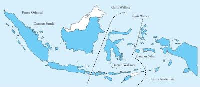Pembagian daerah biogeografi Indonesia oleh Garis Wallace dan Weber