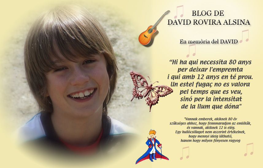 BLOG DE DAVID ROVIRA ALSINA