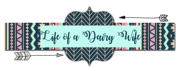 Life of a Dairy Wife