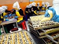 Aneka Bisnis Sampingan Untuk Karyawan