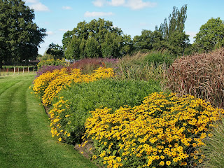 Sussex Prairies Garden. Amazing flowers and good example of garden design.