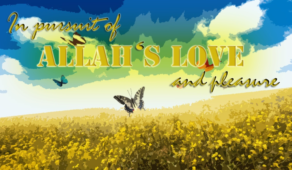 In Pursuit of Allah's Love and Pleasure