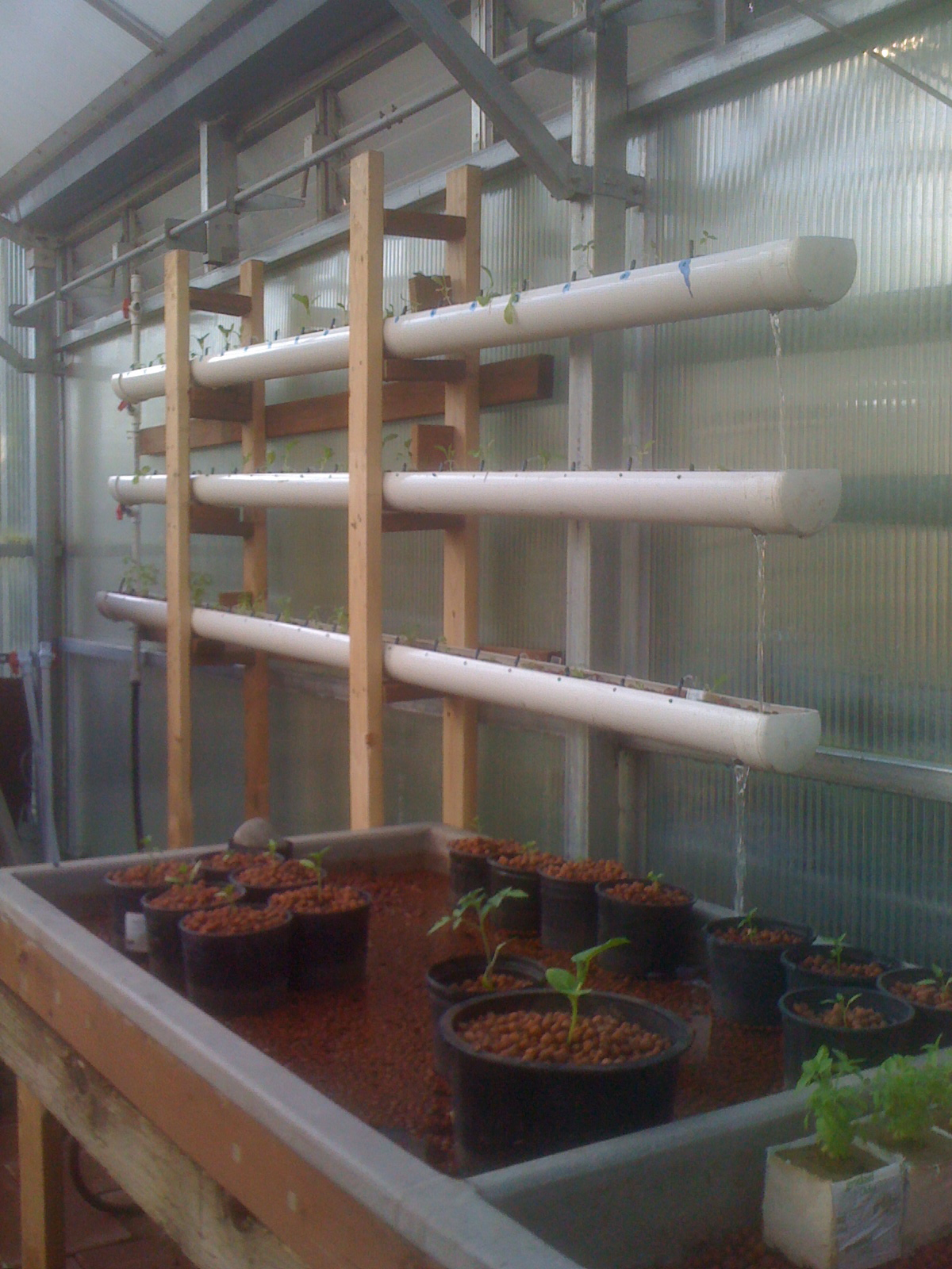 Hydroponics blog healthier food converting the for Hydroponic grow bed