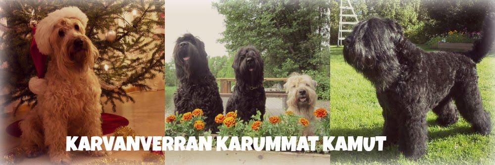 Kennel Karvanverran karummat koirakamut