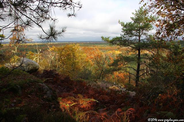 Paysage d'automne, Trois Pignons, Cornebiche, (C) 2014 Greg Clouzeau