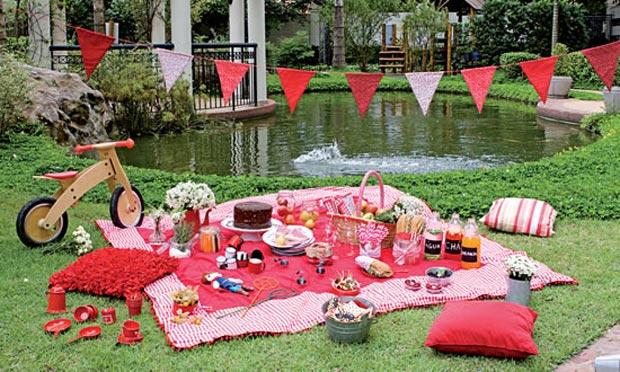 festas aniversario jardim zoologico maia:Picnic Theme Party