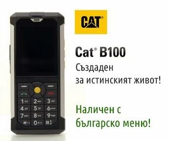 CAT B100