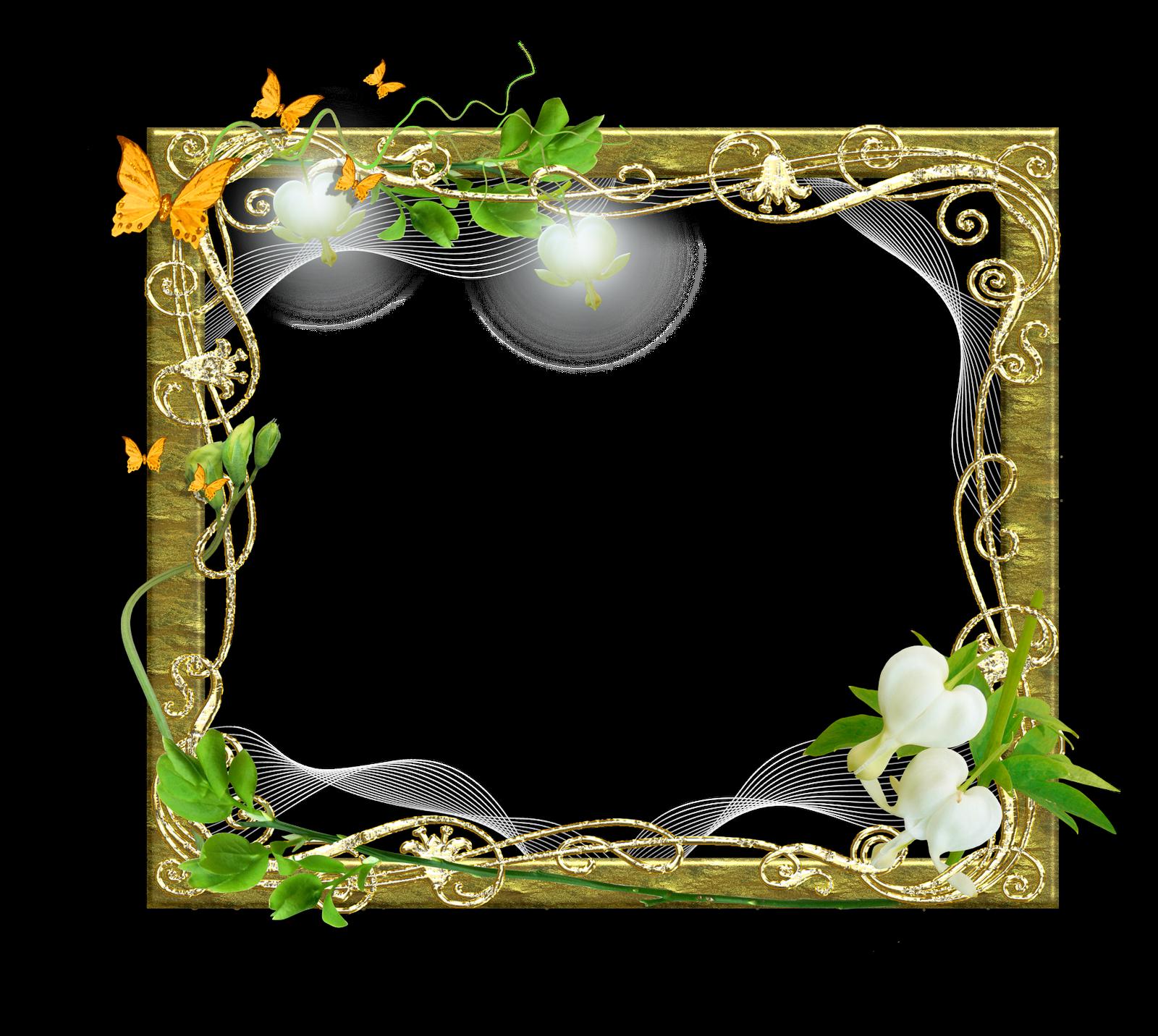 Marcos gratis para fotos marcos florales para fotos - Marcos de cuadros para fotos ...