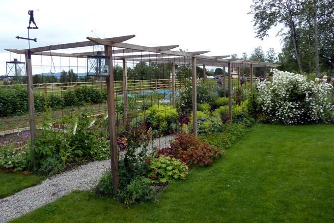 Tankar om och från min trädgård.: 2 trädgårdar i Östersund ...