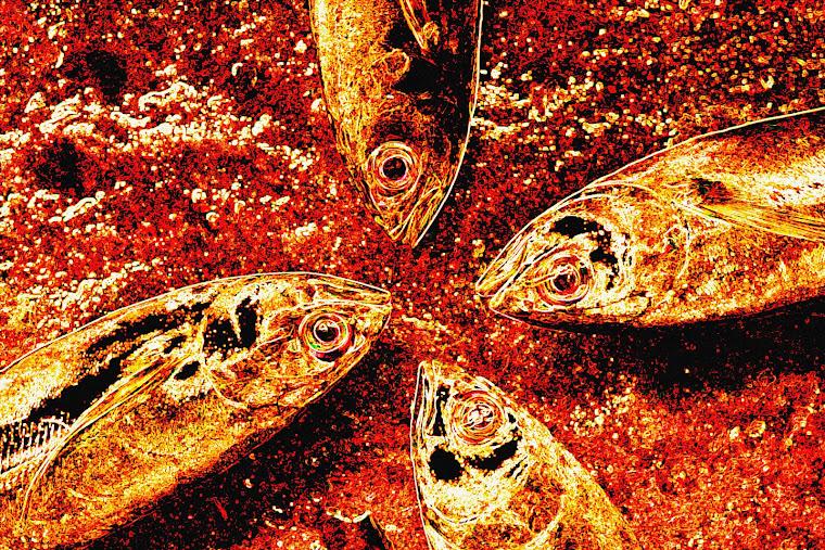 4 Ekspresi Ikan. 2007