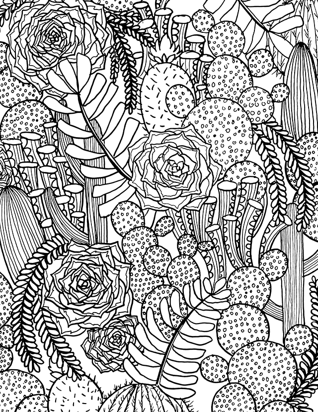 succulent coloring page - alisaburke channeling inspiration and a free coloring