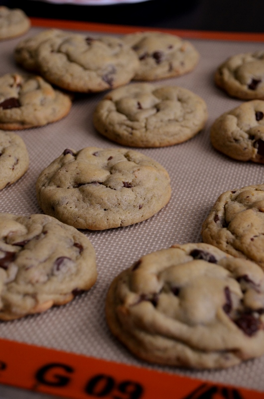 For the Love of Dessert: Chocolate Chip Pudding Cookies