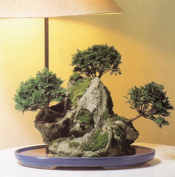 roca artificial para bonsai   construccion y manualidades : hazlo