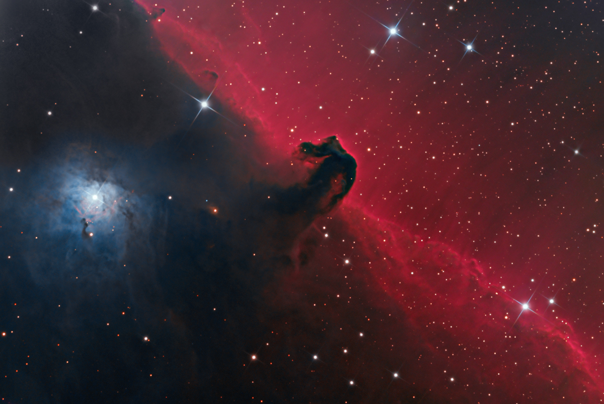 Good   Wallpaper Horse Nebula - Horsehead-Nebula-Wallpaper-HD-09  You Should Have_152118.jpg