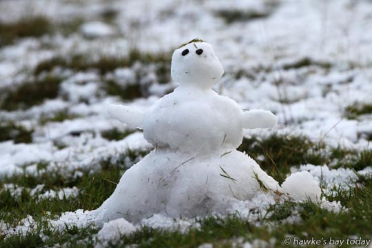 Little snowman on Te Mata Peak, Havelock North. photograph
