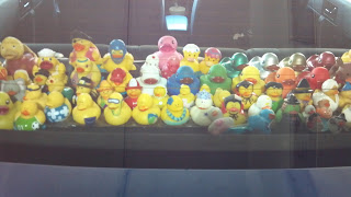 bunch of rubber ducks in the back of someone's car window