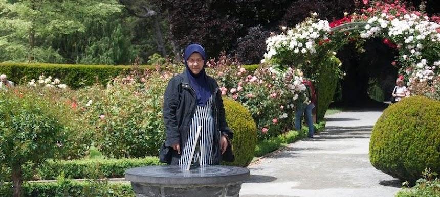 HASHIMAH ABDUL RAZAK @BLOGGER