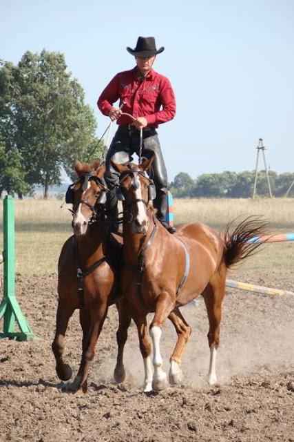 Фото Укринформ: кони и ковбой