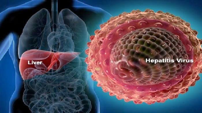 Hepatitis a virus