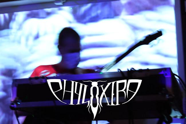 PHYLOXERA