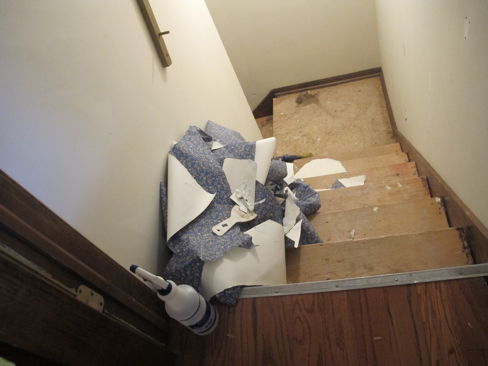 home wallpaper removal solution wallpaper stripping solution download wallpaper remover