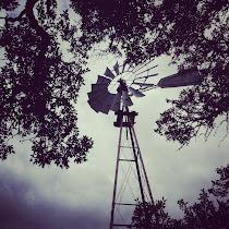 Texas-Style Zombie Killers - Feb 12